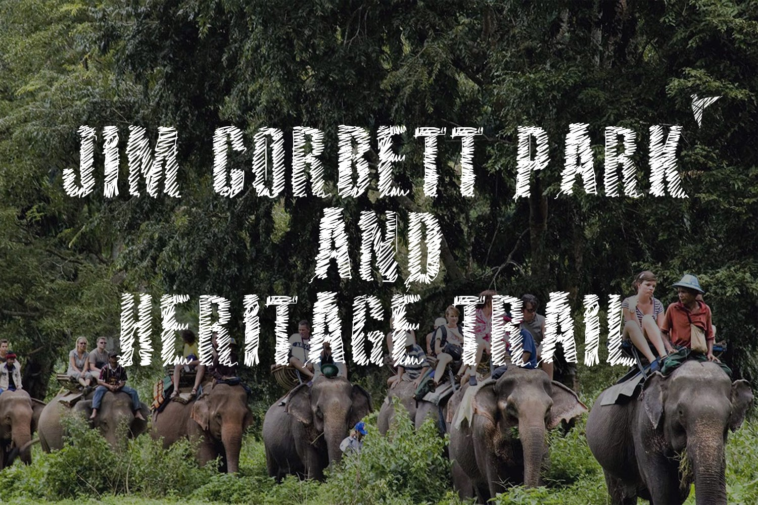 ecotourism of jim corbett national park Jim corbett national park is the oldest national park in india and was established in 1936 as hailey national park to protect the endangered bengal tiger.